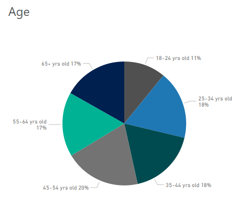 Pie chart breaks down Bing users by age