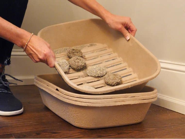 Person cleaning Kitty Sift kitty litter tray